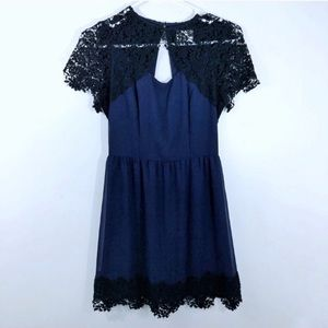 Pins + Needles Black and Blue Lace Cocktail Dress